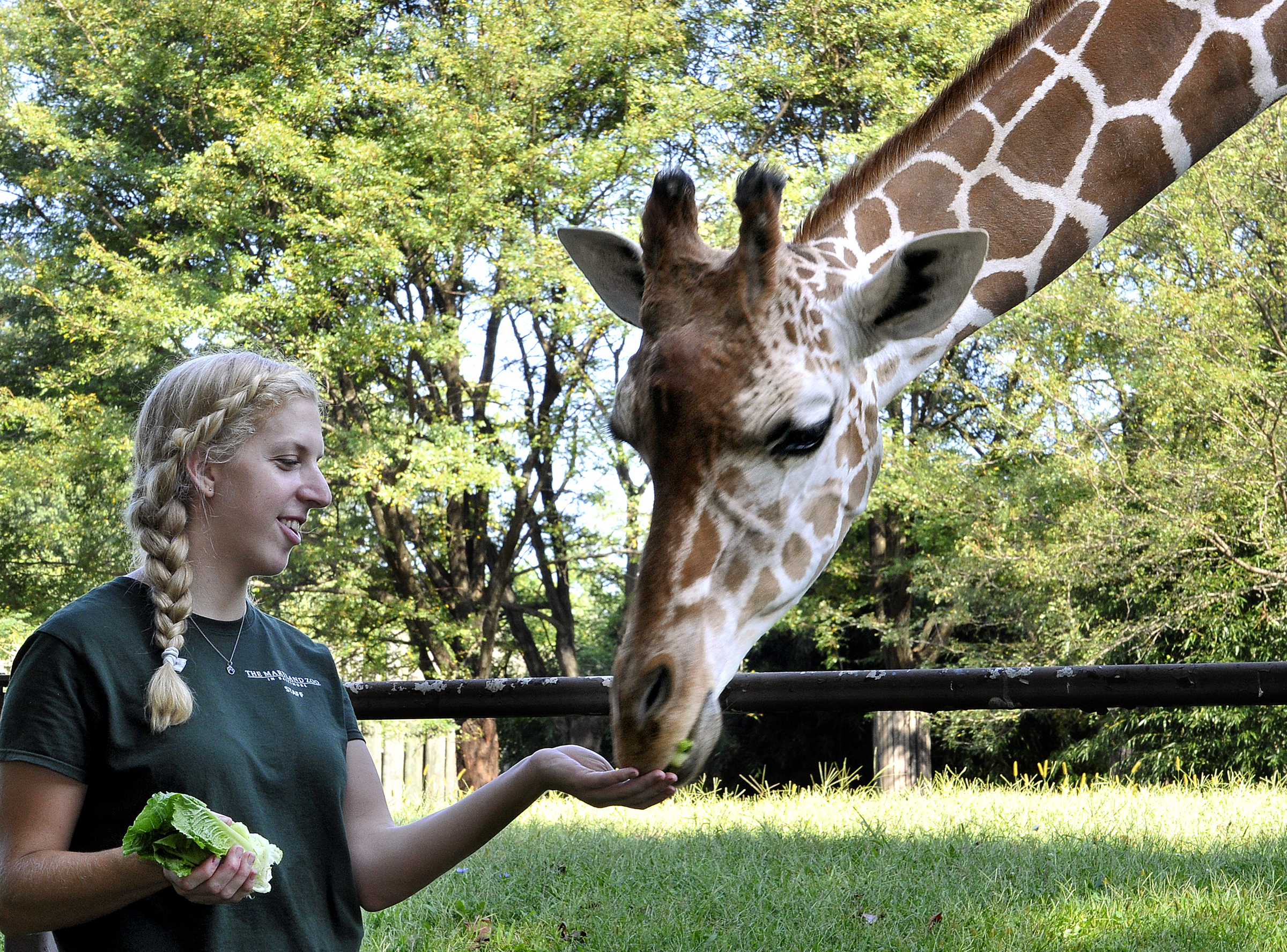 Get That Life How I Became A Zookeeper