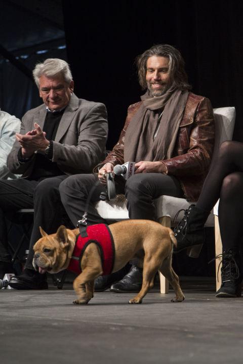 Margo Roth Spiegelman S Dog
