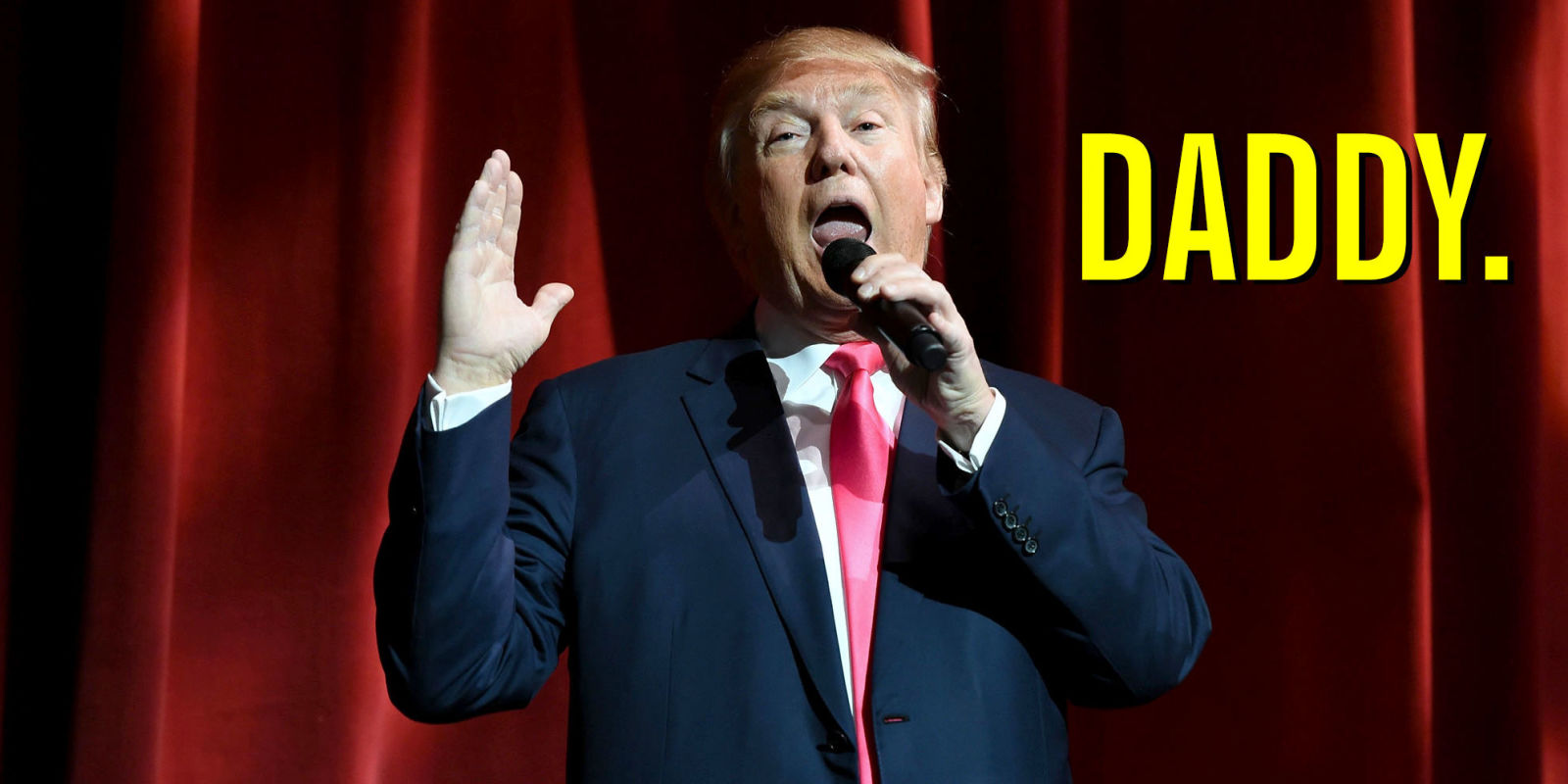 Donald trump book erotic