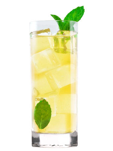 2 oz. Camarena Tequila Silver  ½ oz. lemon juice  ½ oz. simple syrup  2 ginger slices  6 mint leaves  2 oz. ginger beer  Garnish: mint leaves  To make simple syrup, mix equal parts hot water and sugar until sugar is dissolved. Muddle mint, ginger, and simple syrup in a cocktail shaker. Add tequila, lemon juice, and ice. Shake and strain into a tall glass filled with ice. Top with ginger beer and stir. Garnish with mint leaves.  Source: Camarena Tequila